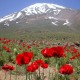 Let's climb up to highest summit of Western Asia, Damavand