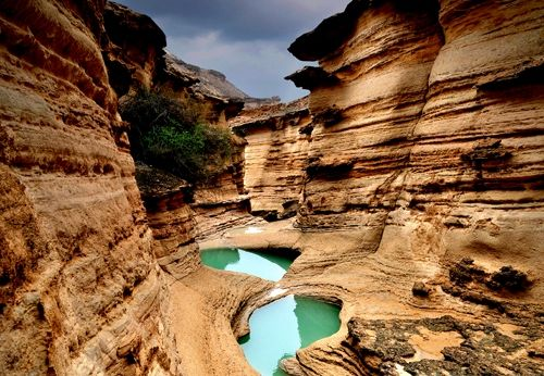 Qeshm Geopark Advisor Is Selected As UNESCO Geoparks Council