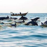 Hengam Island-Iran