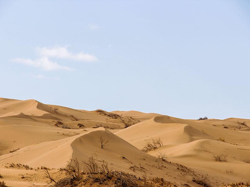 Iran deserts : varzaneh