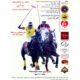 مسابقه تیم های چوگان ایران و آرژانتین در حمایت کودکان بنیاد خیریه شریان